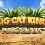Big Cat King